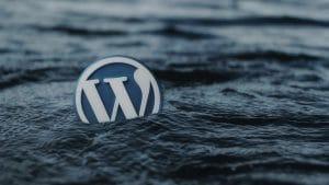 Wordpress Hooks, cosa sono e come utilizzarli